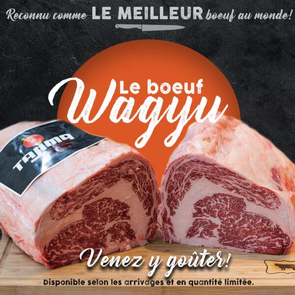Wagyu Promo Site2